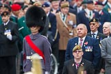 Remembrance Sunday at the Cenotaph 2015: The middle of the three very long columns before the start of the March Past, here group F1, Blind Veterans UK. Cenotaph, Whitehall, London SW1, London, Greater London, United Kingdom, on 08 November 2015 at 11:23, image #2