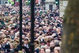 Remembrance Sunday at the Cenotaph 2015: Over 10.000 Veterans waiting for the begin of the March Past, in front the TFL group. Cenotaph, Whitehall, London SW1, London, Greater London, United Kingdom, on 08 November 2015 at 11:26, image #9